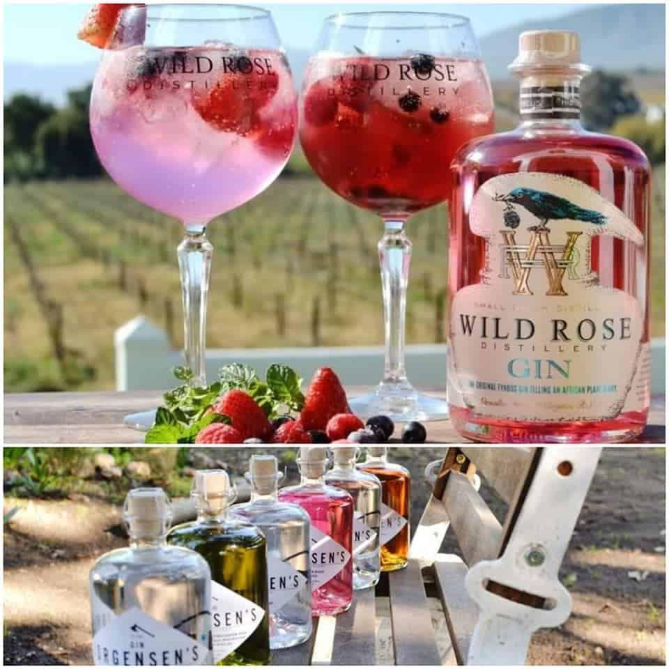 Wild Rose Fynbos Gin